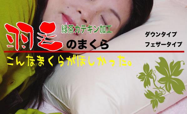 羽毛の枕カテキン茶加工