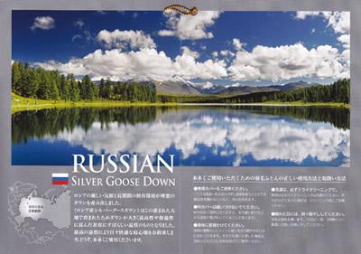 ロシア産シルバーグースダウン