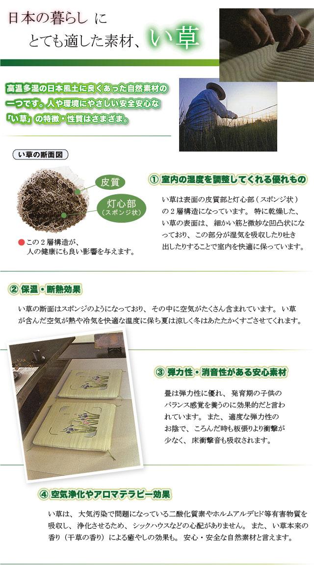 日本の暮らしにとても適した素材、い草