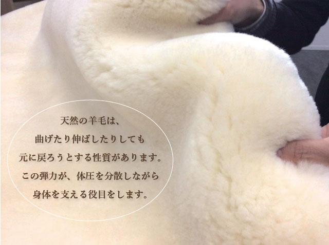 天然の羊毛