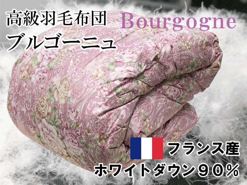 umo-bourgogne