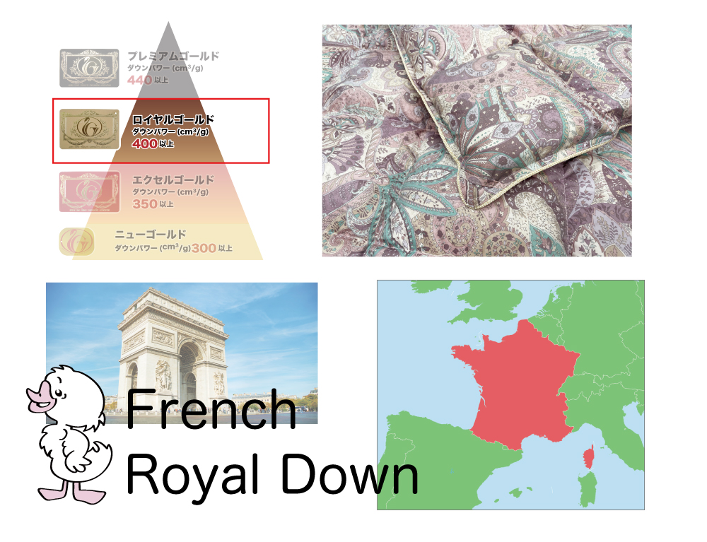 フランス産ホワイトダウン